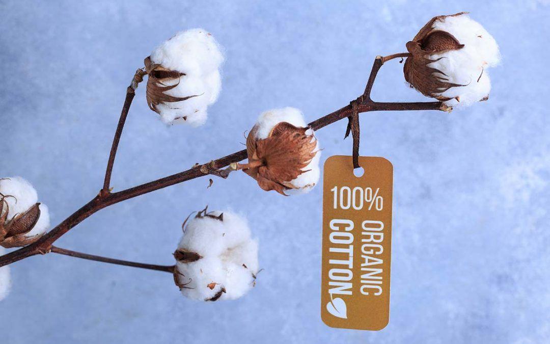 Compresas de tela de Algodon 100% orgánico